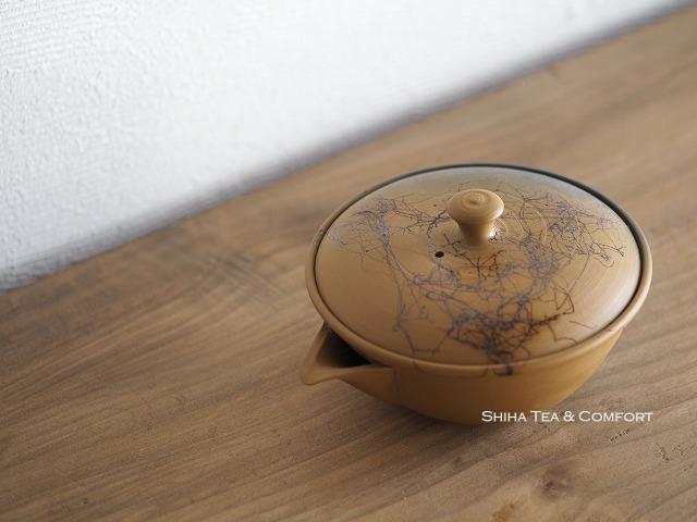 Beautiful Japanese Houhin Kyusu Teapot, Tokyo Teapot  Shop, Shiha Tea & Comfort, Japan
