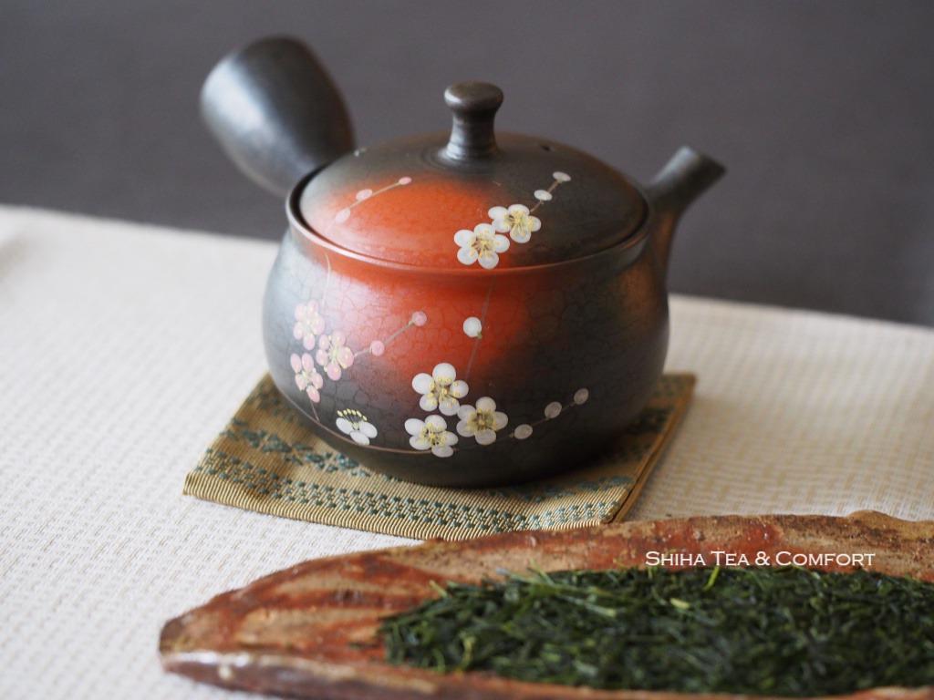 Beautiful Japanese Kyusu Teapot, Tokyo Teapot  Shop, Shiha Tea & Comfort, Japan